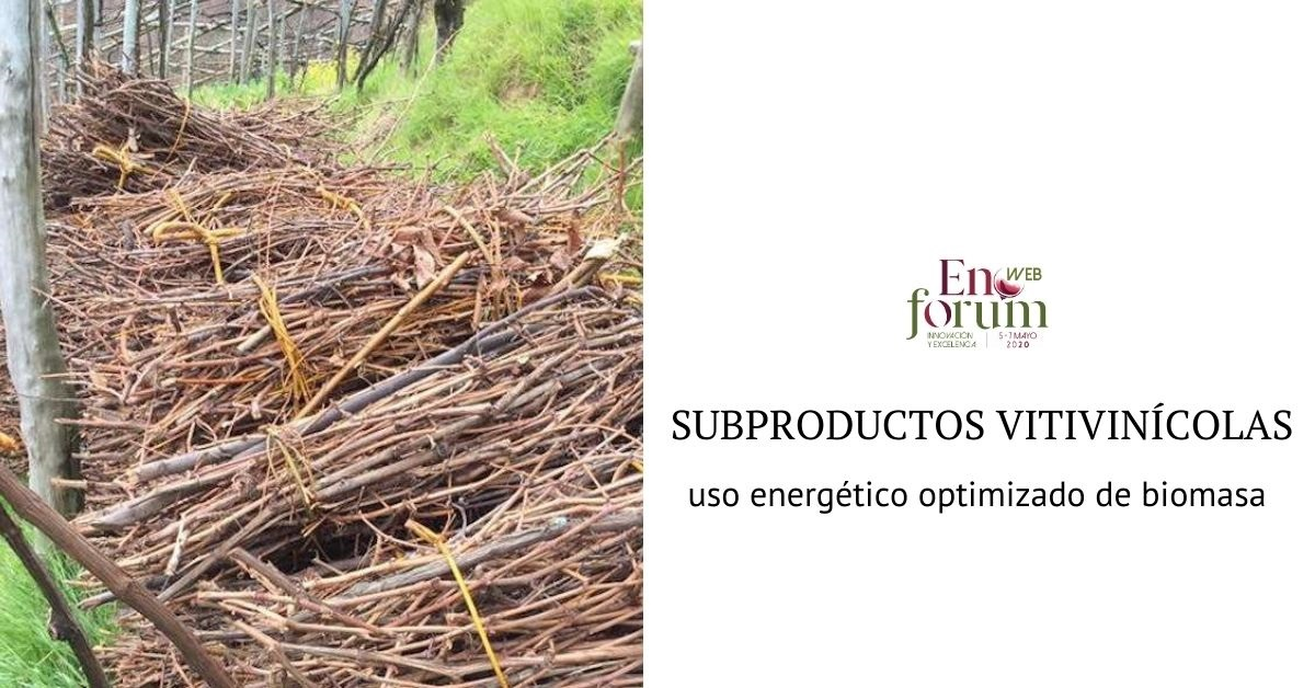 Recovery of wine by-products. From waste to sustainable and high potential energy resource