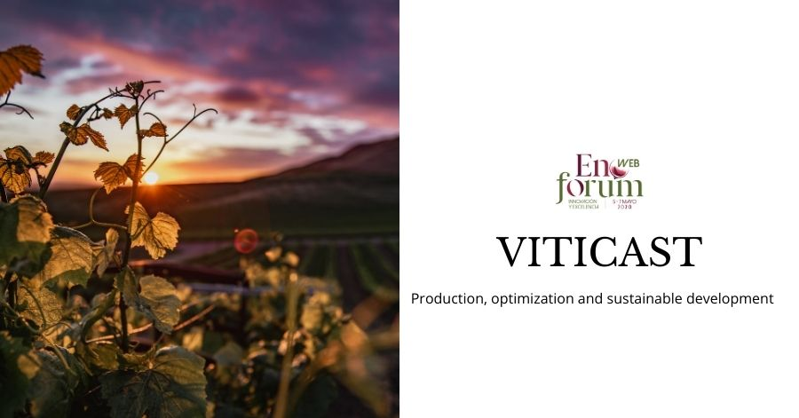 VITICAST: Production, optimization and sustainable development of the vine cultivation through fungal diseases prediction –  FEUGA-VITICAST